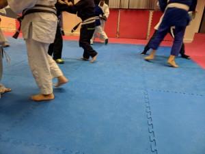 SD_Judo